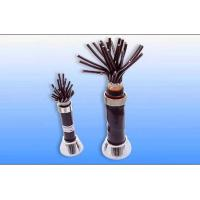 PVC / XLPE insulated PVC sheathed control cable with rated voltage up to 450 / 750KV Manufactures