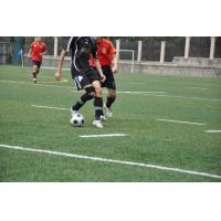 Buy cheap Synthetic grass for soccer pitch from wholesalers
