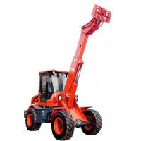 Customized Telescopic Loader