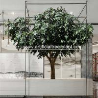 Wholesale Environment Flexible Artificial Ficus Tree For School Decoration / Fake Ficus Plant from china suppliers