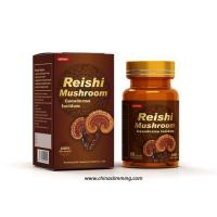 China Supply Reishi Mushroom Ganoderma Lucidum----100% pure nature on sale