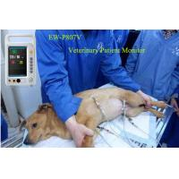 Wholesale 7 inch 4 parameter--Multi-Parameter Patient Monitor EW-P807V for Veterinary monitoring from china suppliers