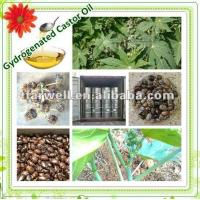 China Dehydrated Castor Oil ( Chinese Castor seed) on sale