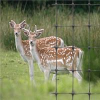 Buy cheap Plastic Deer Farm Fencing Nets from wholesalers