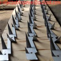Buy cheap low price pvc coated galvanized stainless steel wall spikers/razor spikers fence/Galvanized Big Type Wall Spike 4 feet l from wholesalers