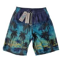 Summer HOT Quick Dry Men Shorts Brand Summer Casual Clothing Coconut Trees Swimwears Beach Shorts Men's Seaside Board Sh