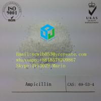 China Pharmaceutical Raw Material Ampicilin For Pharmaceutical Industry 69-53-4 on sale