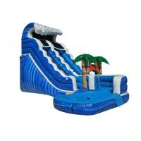 Buy cheap Forest Adventure Inflatable Water Slide And Pool , Bouncy Double Water Slide from wholesalers