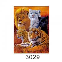 Buy cheap 30x40cm Size 3D Pictures Of Animals 0.6mm PET Material Durable from wholesalers