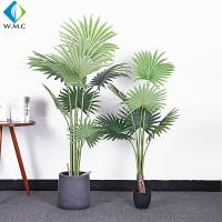 Wholesale Fan Shaped Leaves Artificial Bonsai Tree , Artificial Palm Trees For Shop Window Display from china suppliers