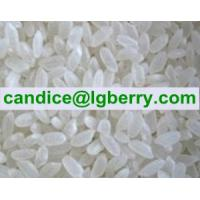 Natural Rice Protein powder Manufactures