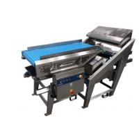 CCD dehytrated vegetable color sorter Manufactures