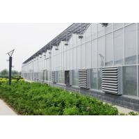 Buy cheap Agricultural Venlo Type Greenhouse , Stable Structure Polycarbonate Sheet Greenhouse from wholesalers