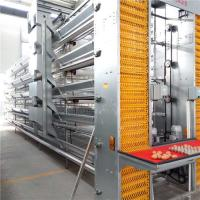 Buy cheap Stable Performance Automatic Egg Collection System Smooth Running With Belt from wholesalers