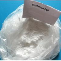 Buy cheap Injectable Muscle Building Steroids Testosterone Sustanon 250 White Powder For Muscle Mass from wholesalers