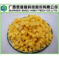 Buy cheap Freeze Dried Mango (FD Mango) from wholesalers