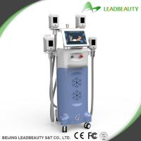 Buy cheap Beauty spa use fat loss cryolipolysis body slimming machine from wholesalers