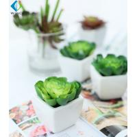Wholesale Home Decor Fake Potted Cactus , 11cm Artificial Succulent Plants Durable from china suppliers