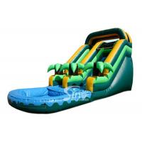 Buy cheap Summer Parties Coconut Tree Inflatable Water Slide With Pool For Kids from wholesalers