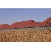 Wholesale Bay Area Roofing Western Roofing Metal Roofing Gallery Metal Roofing tiles  Stone Coated Metal Roofing Tiles ROMA from china suppliers