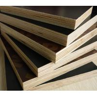 Buy cheap 4*8feet cheap film faced laminated plywood in china for struction and building / phenolic  / WBPpoplar and birch board from wholesalers