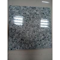 New Products Polished Qasia Auzl Granite Wall or Flooring Tile Promotion Manufactures
