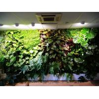 Wholesale Best-selling Quality Artificial Plants Wall with Various Hanging Plastic Leaves Spray from china suppliers