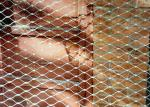 Buy cheap Custom SS316 Wire Rope Net X-Tend Animal Zoo Mesh Parrot Aviary Bird Netting from wholesalers