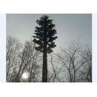 Buy cheap Camouflaged Bionic Pine Palm Tree Monopole Tower from wholesalers