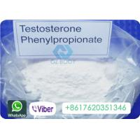 Buy cheap Phenylpropionate Testosterone Anabolic Steroid CAS 1255-49-8 High Purity from wholesalers