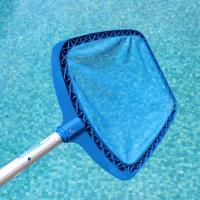 Wholesale Swimming Pool Leaf Skimmer from china suppliers