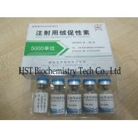 Buy cheap Hcg Injections from wholesalers