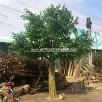 Wholesale Large Fiberglass Material Artificial Ficus Tree Faux Banyan Plant For Outdoor Decoration from china suppliers