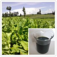 Buy cheap best plant food for all plants and tree:seaweed extract fertilizer liquid from wholesalers