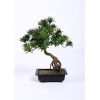 Buy cheap Leaning Bonsai Pine Tree BC076-4 , 55cm Artificial Outdoor Bonsai Trees Lush product