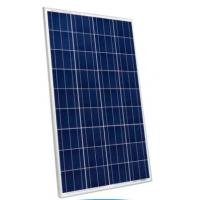 Wholesale TPT Backsheet Residential Polycrystalline Solar Module 3.2mm Tempered Glass from china suppliers