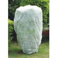 Waterproof Agriculture Frost PP Spunbond Non Woven Fabric, Garden Protection Plant Cover Manufactures