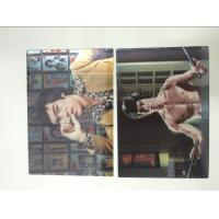 Wholesale Multicolor Printed 3D Lenticular Postcards , Personalised 3d animated pictures Offset UV Prining from china suppliers