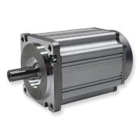 Delta Winding Brushless DC Electric Motor 60ZW3S Series Square 60 * 60 mm Size