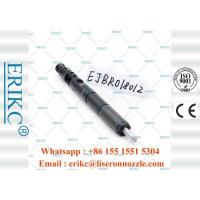 Wholesale EJBR01801Z Diesel Auto Delphi Common Rail Diesel Injectors 8200049873 from china suppliers