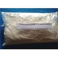 Wholesale CAS No. 57-85-2 Testosterone Anabolic Steroid powder Testosterone Propionate from china suppliers