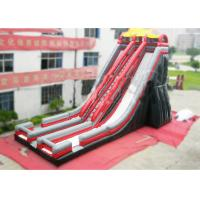 Buy cheap Ice Age Inflatable Slide Rental Double Water Slide For Ice Age Film Fans from wholesalers
