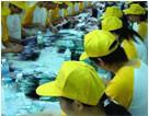 China Interpretation services of  trade show, exhibition,factory visist etc. on sale
