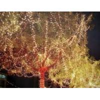 Buy cheap Solar Christmas Holiday Lights,Solar Tube LED Lights,Solar String LED Lights,SOLAR Powered from wholesalers