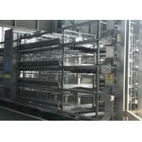 Buy cheap Stable Automatic Poultry Feeder System Chick Rearing Equipment 15-20 Years Lifespan from wholesalers