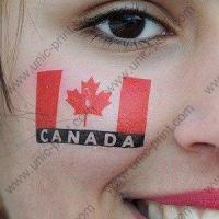 Flag Temporary Tattoo for World Cup 2010 Manufactures