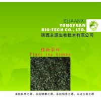 Buy cheap Yongyuan Bio. supply Pure natural with no added new product-plant tea broken/tea bag from wholesalers