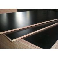 Wholesale Black Color Phenolic Film Faced Plywood 12mm - 18mm Thickness Environmental Friendly from china suppliers