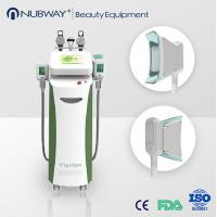 Buy cheap Vertical Cryolipolysis fat freeze slimming machine for beauty clinic from wholesalers