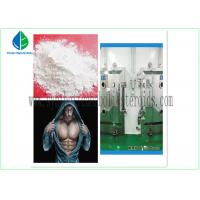 Buy cheap Anti Estrogen Steroids Bodybuilding Testosterone Propionate Injection / Oral from wholesalers